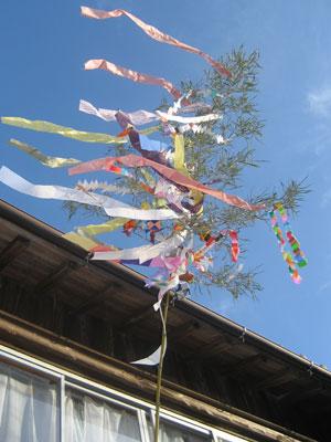 blog-tanabata.jpg